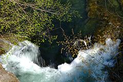 渓流のオリジナルプリント