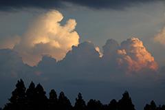 入道雲のオリジナルプリント