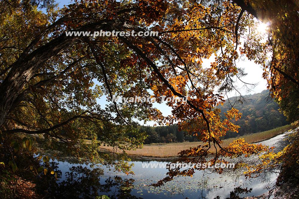 大峰沼の写真素材