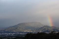 虹のオリジナルプリント