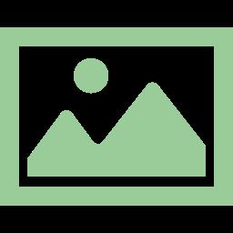 originalprint icon