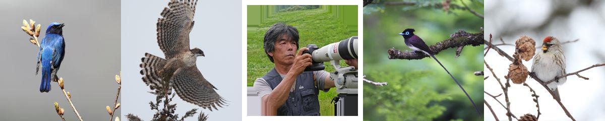 写真家のテーマ『吉野俊幸『鳥の組曲』』