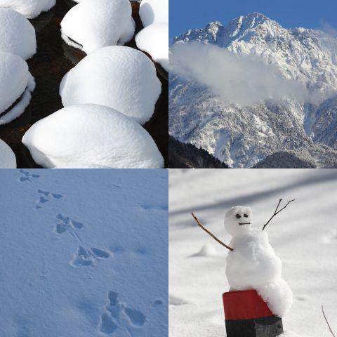おすすめのテーマ『雪景色』