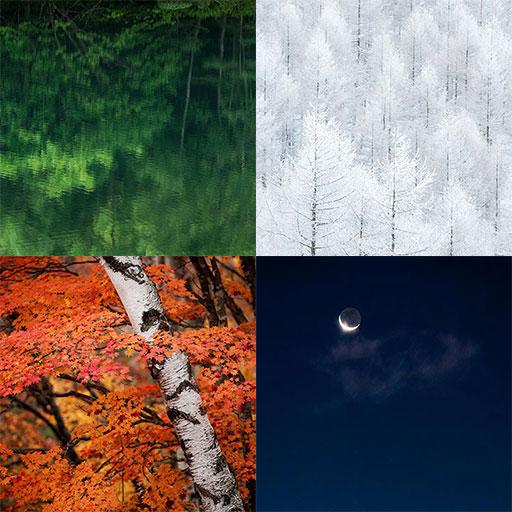 自然の記憶 No.2のフォトブック