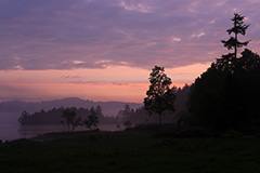 夏の尾瀬沼の夜明け