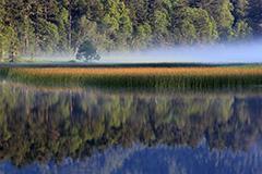 紅葉の尾瀬沼