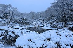 冬のセゾンガーデン