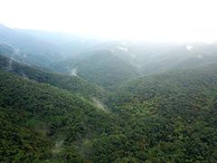 山原の空撮