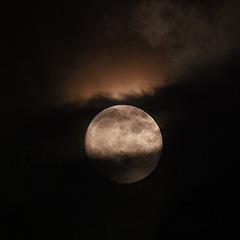 満月のフォト作品