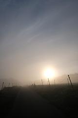 夏の朝日の夜明け