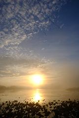 秋の伊豆沼の夜明け