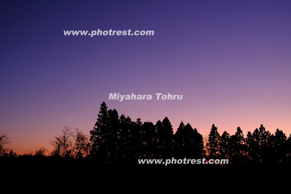 夕景の写真素材