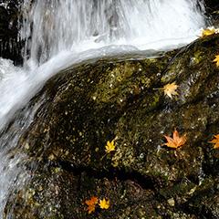 滝のフォト作品