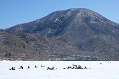 冬のワカサギ釣り