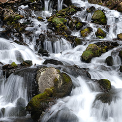 渓流のフォト作品