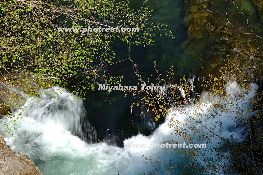 渓流の写真素材