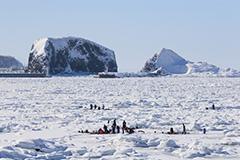 冬の流氷ウォーク