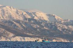 冬のスケソウ漁