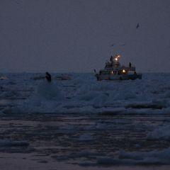 流氷観光船のフォト作品