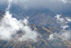 白山の紅葉