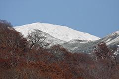 冠雪した秋の牛ヶ岳