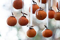 秋の干し柿