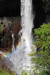 新緑の華厳の滝