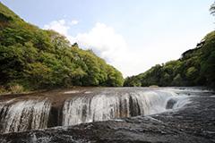 新緑の吹割の滝