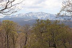 新緑の上州武尊山