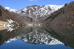 春の奥利根湖