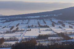 冬の畑の夕景