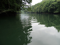 夏の高津戸ダム