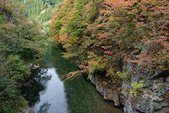 紅葉の片品川