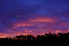 秋の夜明け