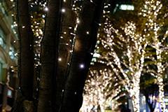 冬の東京丸の内イルミネーション