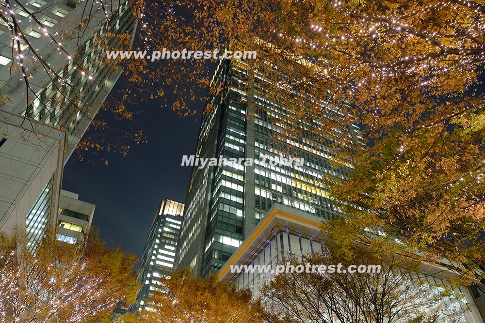 東京丸の内イルミネーションの写真素材