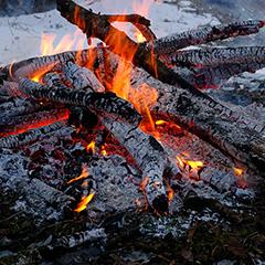 焚き火のフォト作品