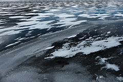氷紋のオリジナルプリント