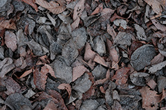 落ち葉のオリジナルプリント