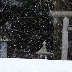 降雪のフォト作品