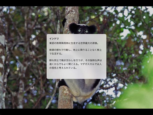 【iOS版】画像ビューワー